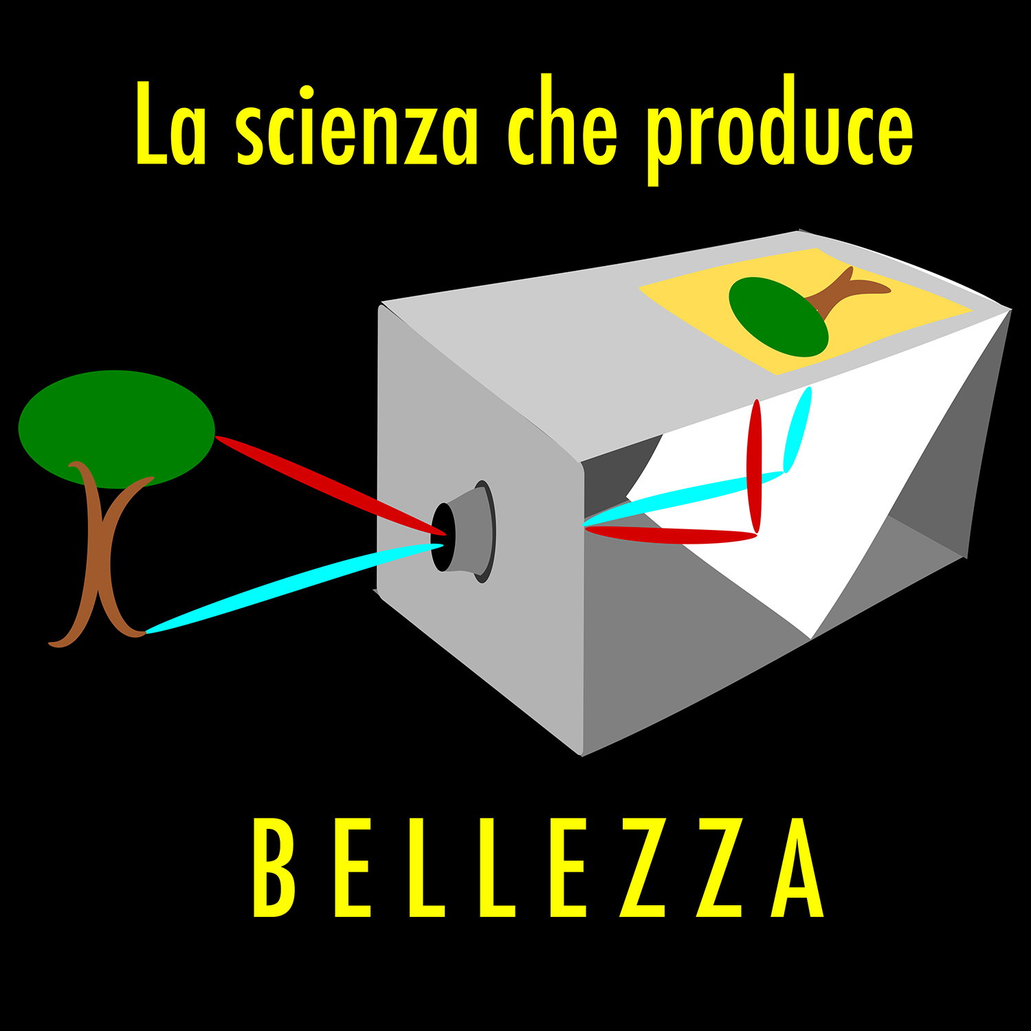 La scienza che produce bellezza